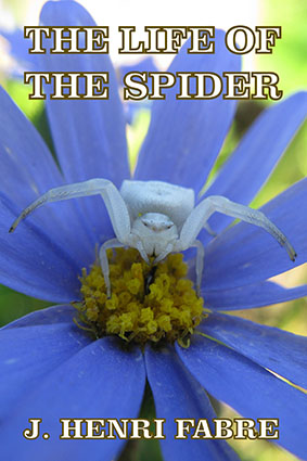 LIFE-OF-THE-SPIDER-FRONTCOVER-OP
